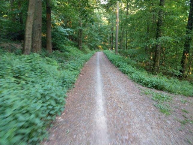 Everesting Strecke